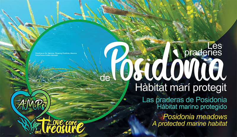 AMPs Posidonia Care, Marine Protected Areas' Interactive installation