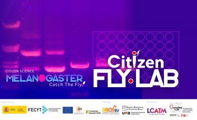 CONVOCATÒRIA: Citizen Fly Lab, Ciència ciutadana en biologia molecular per estudiants de secundària